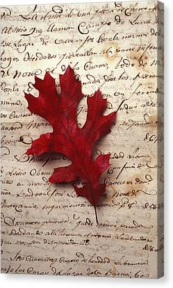 Red Leaf Canvas Print - Leaf On Letter by Garry Gay