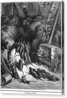 League Of Rats, 1868 Canvas Print by Granger