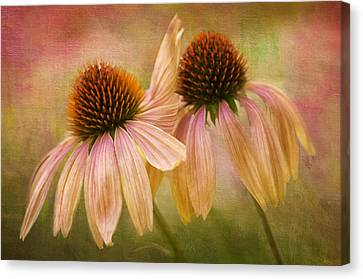 Lean On Me Canvas Print by Donna Eaton