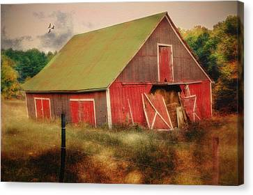 Lean To The Left Canvas Print by Mary Timman