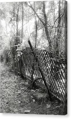 Canvas Print featuring the photograph Leaning Fence by Mary Almond