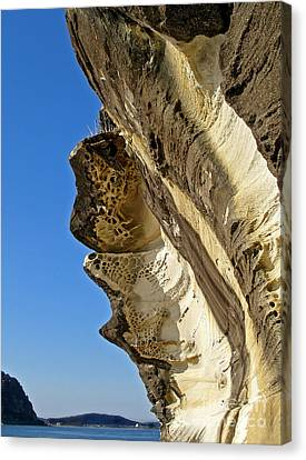 Leaning Rock Canvas Print by Kaye Menner