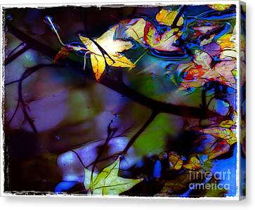 Leaves And Reflections Canvas Print by Judi Bagwell
