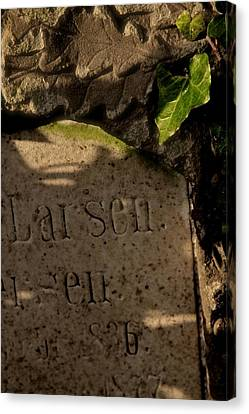 Leaves Of Stone And Green Canvas Print