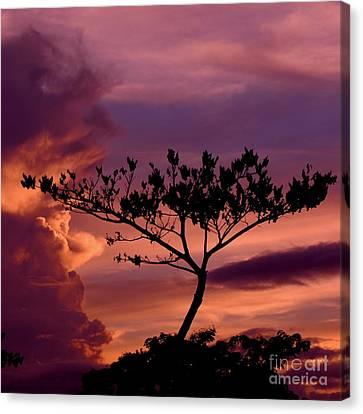 Leeward Oahu Canvas Print
