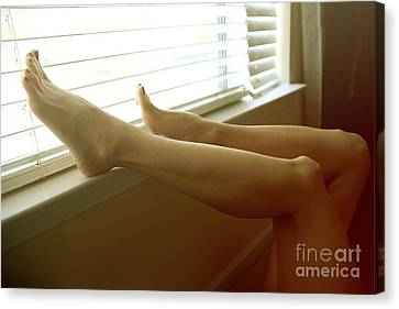 Legs At The Window Canvas Print by Tos