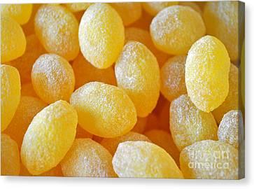 Lemon Drops Canvas Print by Gwyn Newcombe