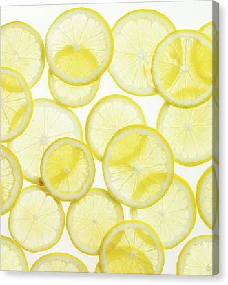 Lemon Slices Arranged In Pattern Canvas Print by Lauren Burke