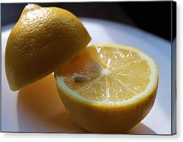 Lemon Slices Canvas Print by Sarah Broadmeadow-Thomas