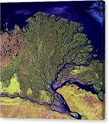 Lena River Delta, Russia Canvas Print
