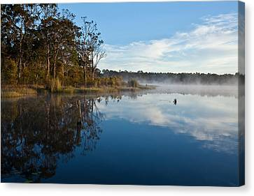 Lenthalls Dam 03 Canvas Print by David Barringhaus