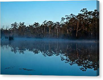 Lenthalls Dam 04 Canvas Print by David Barringhaus