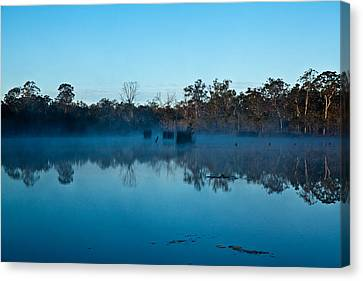 Lenthalls Dam 11 Canvas Print by David Barringhaus