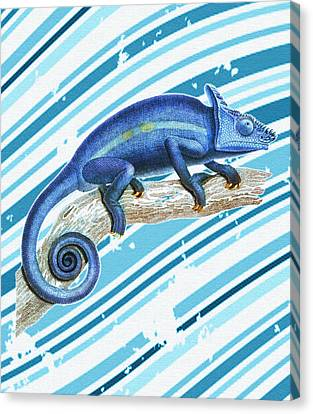 Leo Loves Lizards Canvas Print by Nikki Marie Smith
