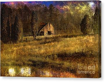 Less Than Perfect Canvas Print by Sari Sauls