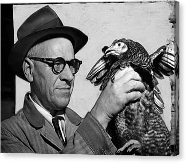 Lester P. W. Wehle, A Live-poultry Canvas Print by Everett