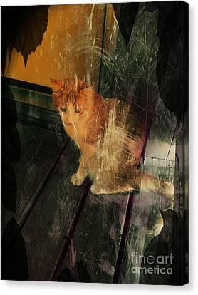 Let Me In Canvas Print by Denisse Del Mar Guevara