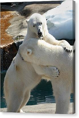 Let Me Whisper In Your Ear Canvas Print by Cindy Haggerty