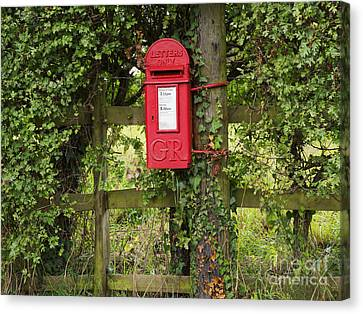 Letterbox In A Hedge Canvas Print by Louise Heusinkveld