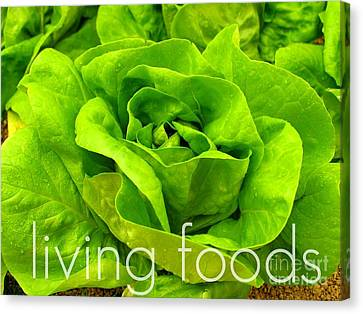 Lettuce Living Raw Foods Canvas Print by Sacred  Muse
