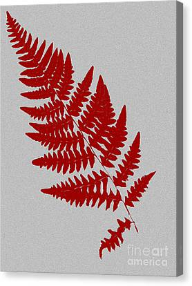 Levere Canvas Print by Bruce Stanfield