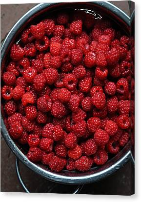 Life Is A Bowl Of Raspberries Canvas Print by Ronda Broatch