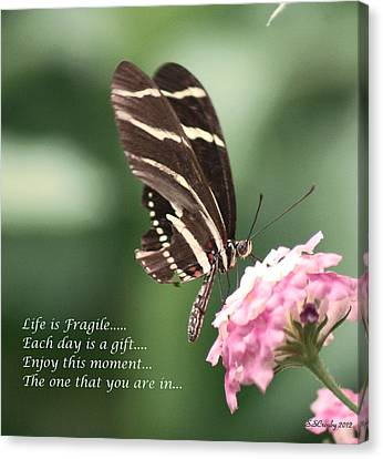 Life Is Fragile Canvas Print