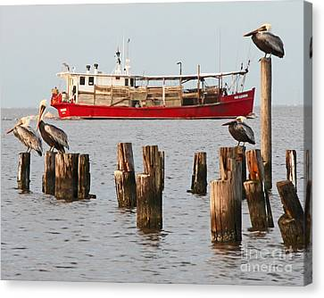Life On Lake Ponchartrain Canvas Print