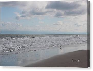 Lifes A Beach Canvas Print by Suzanne Gaff