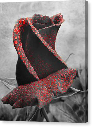 Life's Blood Canvas Print