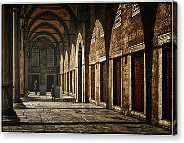 Light And Shadow Canvas Print by Joan Carroll