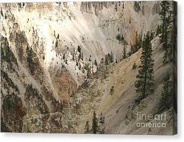 Light And Shadows In The Grand Canyon In Yellowstone Canvas Print by Living Color Photography Lorraine Lynch