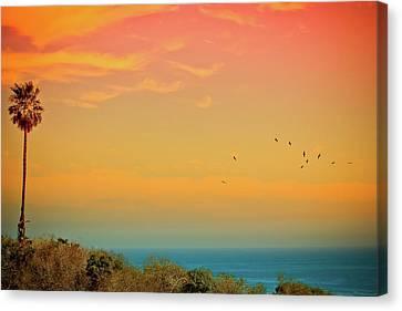 Light Of Sun Setting On  Malibu Beach Canvas Print by Albert Valles