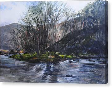 Light Through Trees At Aberglaslyn. Canvas Print