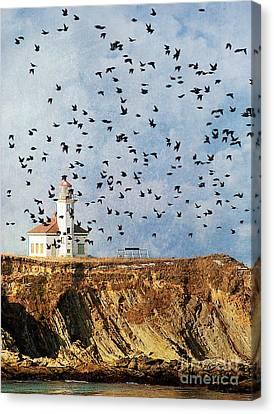 Lighthouse Birds  Canvas Print