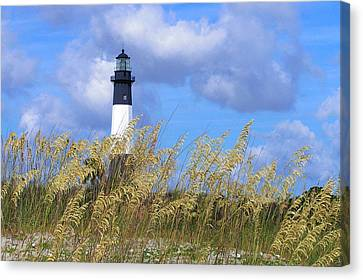 Canvas Print featuring the photograph Lighting The Way by J Cheyenne Howell