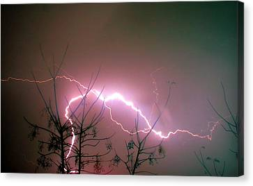 Lightning And Trees Canvas Print by Meir Ezrachi