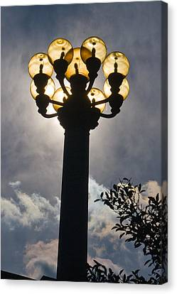 Lights Canvas Print by Terry Finegan