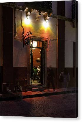 Like Moths To A Flame Canvas Print by Lynn Palmer