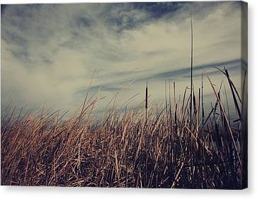 Like The Way You Used To Run Your Fingers Through My Hair Canvas Print by Laurie Search