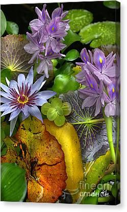 Lillies No. 6 Canvas Print by Anne Klar