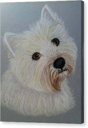 Lilly A Pastel Portrait Canvas Print by Hillary Rose