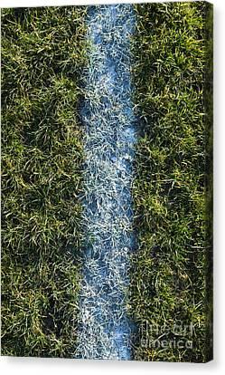 Line On Artificial Turf Canvas Print by Paul Edmondson
