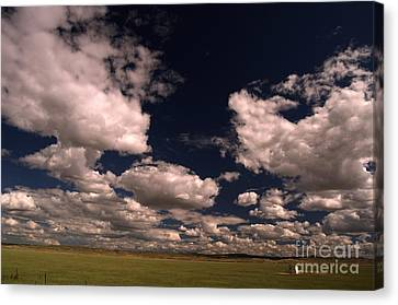 Line Shack  Canvas Print by The Stone Age