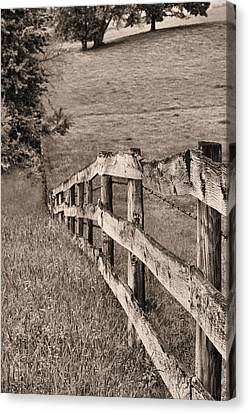 Lines Bw Canvas Print by JC Findley