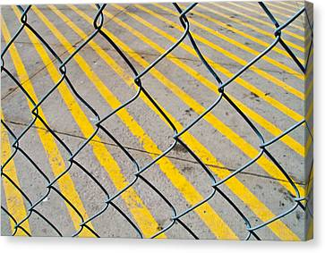 Canvas Print featuring the photograph Lines by David Pantuso