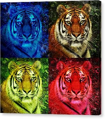 Lion Face Colored Squares Canvas Print by Angela Waye