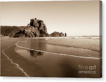 Lion Rock Canvas Print