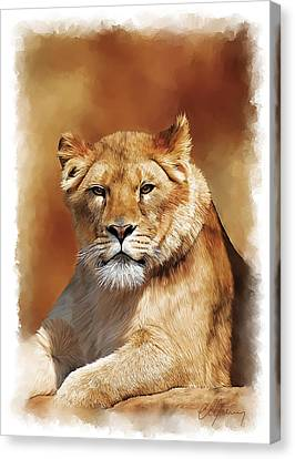 Lioness Portrait Canvas Print by Michael Greenaway