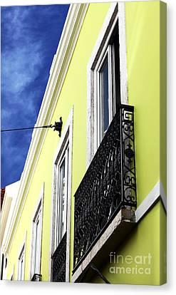 Lisboa Colors Canvas Print by John Rizzuto
